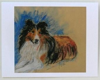 Shetland Sheepdog Sheltie Dog Art Note Cards By Cori Solomon