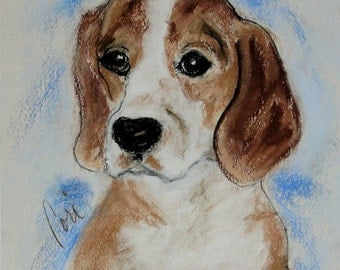 Beagle Dog Art Pastel Drawing By Cori Solomon