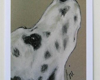 Dalmatian Dog Art Note Cards By Cori Solomon