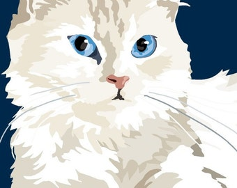 Persian kitten print, 9 x 12.5