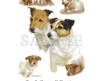 Jack Russell Terriers on Sweatshirt