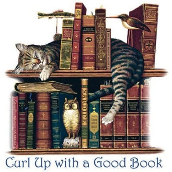 curling up with a book Curl up definition, to form into coils or ringlets, as the hair see more  curl up, to  sit or lie down cozily: to curl up with a good book show more idioms.