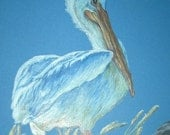 White Pelican  Note Card