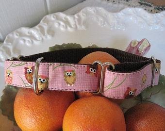 Little Owls Custom Dog Collar-BESTSELLER