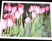 Designs by Denise - Photograph Card - Flowers 3