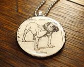 Bulldog dictionary illustration pendant necklace