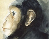 Sweetheart- Chimpanzee art