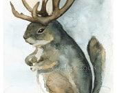 Mature Antelope Squirrel-Squirrel Art, antler