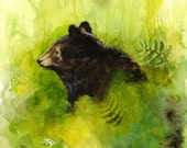 Meadow- Bear in Meadow Limited Edition Archival Print