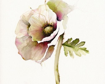 poppy art, floral, french country, nature, cream, minimalist, flower, cottage decor-Poppy Art- Archival print of watercolor- bontanical art