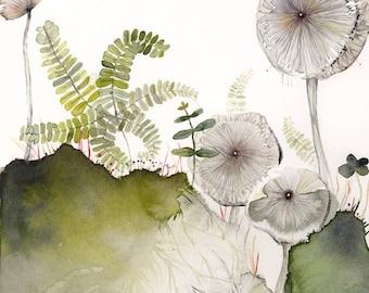 Maidenhair and Mushrooms Archival Print