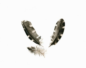 feather watercolor print - Woodpecker Feathers- archival print, minimalist, white, black and white, grey