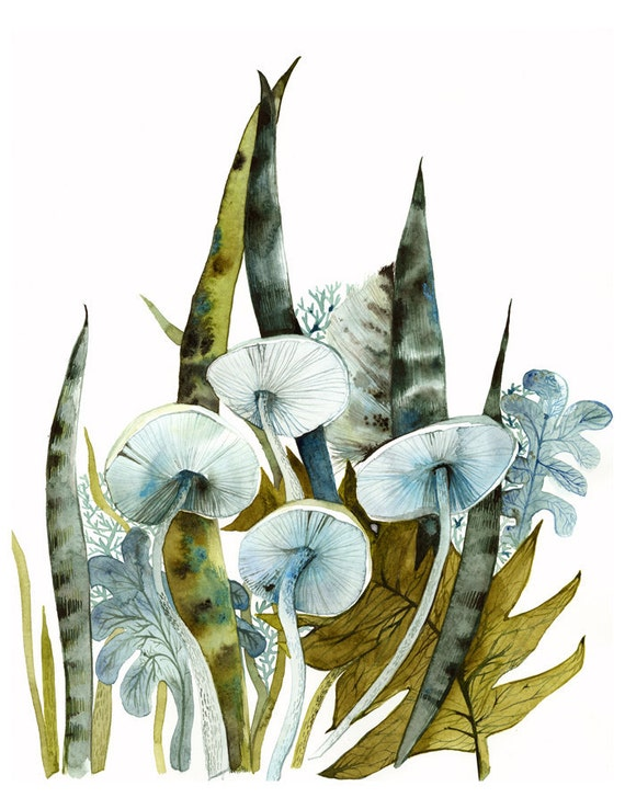 Woodland -archival print, contemporary botanical