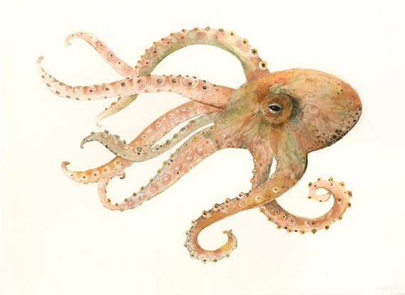 Octopus no. 2 Large Archival print of Watercolor painting
