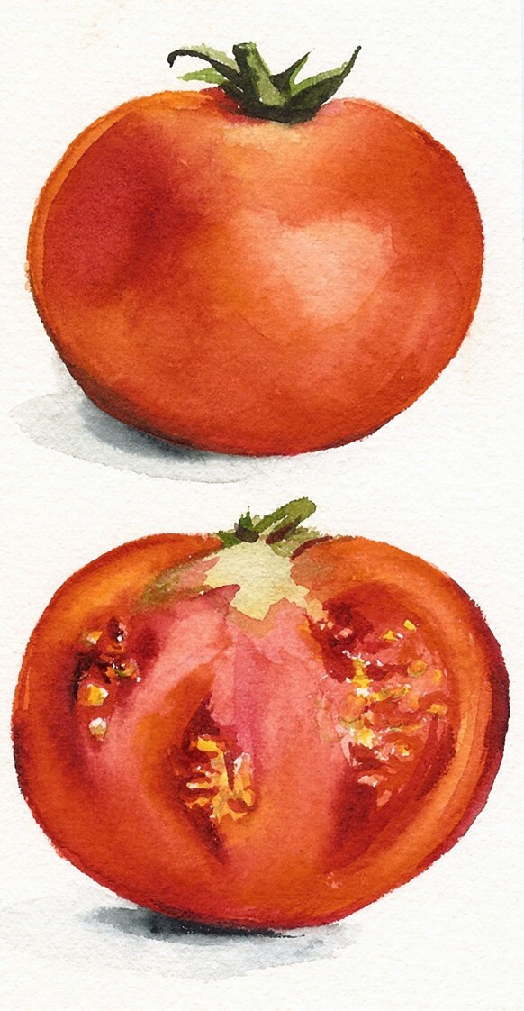 Tomatoes Watercolor Or...