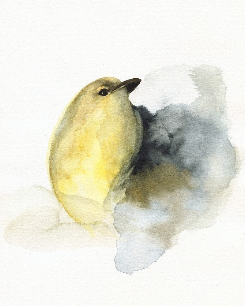 bird art yellow bird watercolor COAL