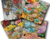 European Flower Market Note Cards by Tiffani Taylor