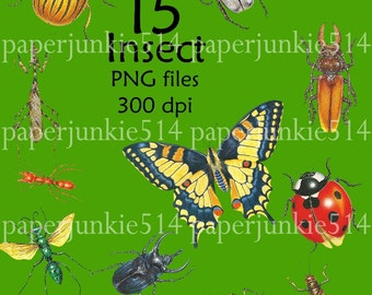 Digital PNG Files - Insects -  Digital, Download, Digital Graphics - BUY Any 3 Three Dollar Digital Items Get ONE