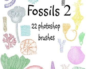 Fossils 2-  Photoshop Brushes - Set of 22 different brushes - web design - Buy Any 3 Three Dollar Digital Items Get One Free
