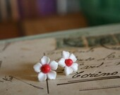 Little Flowers Posts