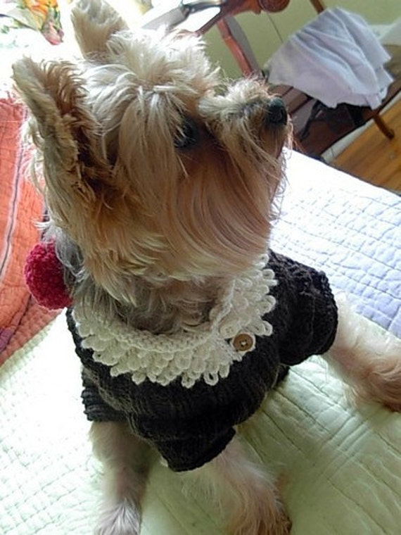 ROOT BEER FLOAT Original Dog Sweater Knitting Pattern \/ NEW