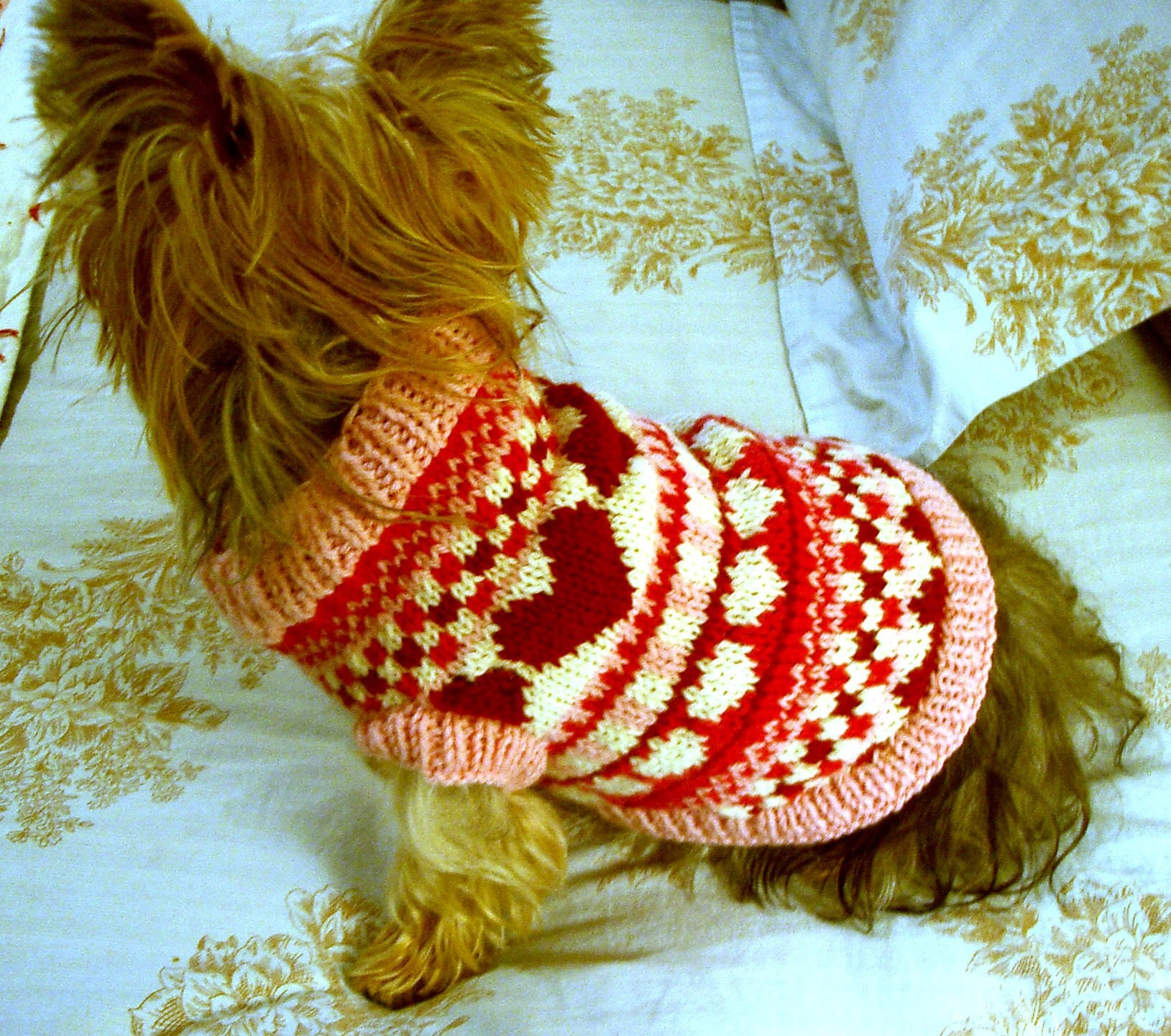 Puppy love fair isle dog sweater knitting pattern - Knitting for dogs sweaters ...