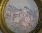 Vintage Blue Birds Oval Framed Print
