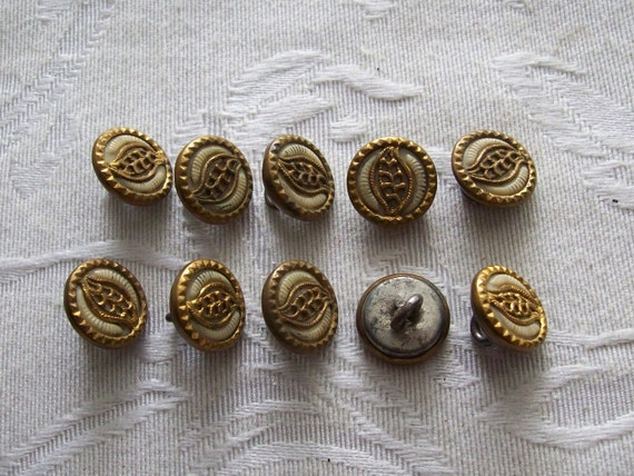 Paisley, Antique Buttons with Ivoroid Centers