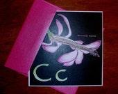 Christmas Cactus Card- set of four
