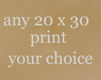 20 x 30 Print - Your Choice of Photograph