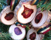 Wood Ornaments CLEARANCE Natural Finish Cedar Wood Slices-set of 5