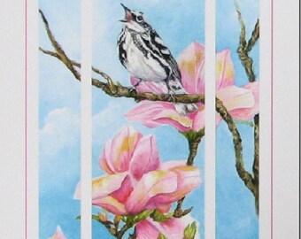 Bird Window View Black White Warbler