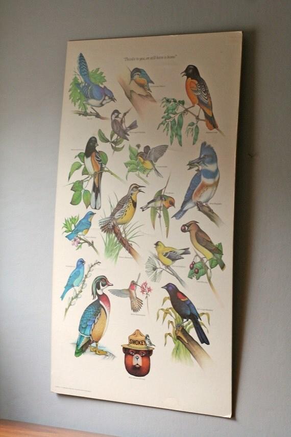 bird poster / vintage Smokey Bear nature poster / large