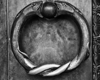Ring of Serpents, Nashville's Parthenon Doors, Ancient Greece, Parthenon, Snakes, Nashville, Black and White Photograph, Photography