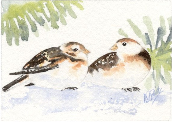 Handpainted watercolour ACEO of a Snow Bunting pair amongst pines