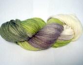 Froggy - Hand Dyed Superwash Merino Wool - Worsted Weight