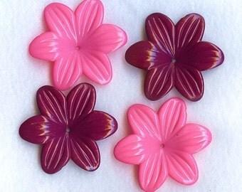 Happy Petals Berry