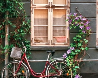 Window photography Scandinavian Bicycle photo Copenhagen Denmark Print Green Purple Gray Home Decor 5x7, 8x10, Matted Fine Art travel photos