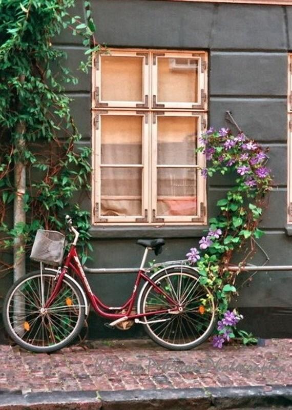 Window photography Scandinavian Bicycle photo Copenhagen Denmark Print Green Purple Gray Home Decor 5x7, 8x10, Matted Fine Art travel photos