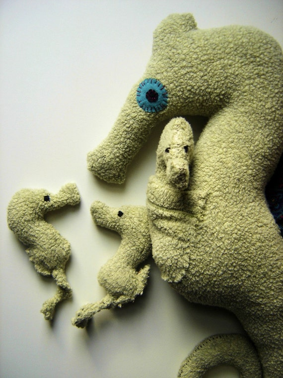 Papa Seahorse with 2 babies