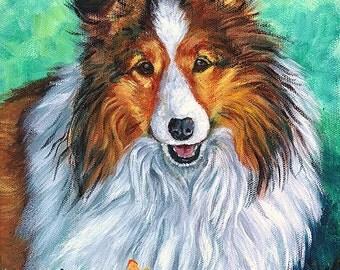 Shetland Sheepdog Giclee Fine Art Print