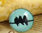 Glass Cabochon, 8mm 10mm 12mm 14mm 16mm 20mm 25mm 30mm Round Handmade photo glass Cabochons  - Birds Collection BCH701F