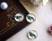 Glass Cabochon, 8mm 10mm 12mm 14mm 16mm 20mm 25mm 30mm Round Handmade photo glass Cabochons - Vintage Birds BCH031D