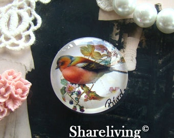 Glass Cabochon, 8mm 10mm 12mm 14mm 16mm 20mm 25mm 30mm Round Handmade photo glass Cabochons   (Vintage Birds) -- BCH709C
