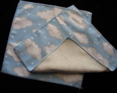Pair of Flannel and OBV Wipes - Clouds (20)