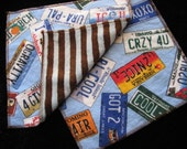 Pair of Flannel and Minky Wipes - License Plates (32)
