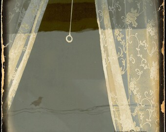 Sepia Window Crow Photograph--Anybody Home... --TTV Fine Art