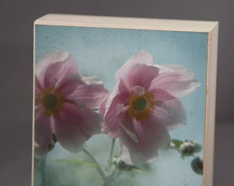 Side by Side 4x4 Fine Art Photograph on Wood Panel