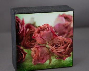 Red Green Roses Photograph on Wood Panel--Fading Roses--4x4 Fine Art