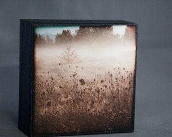 Pink Mauve Blue Meadow Fog 4x4  Photograph on Wood--Foggy Meadow--Fine Art